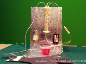 Hemodialysis Kit Working model of Science Fair